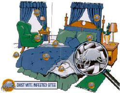 Dust Mite Infested Sites
